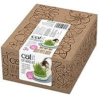 Cat It 2.0 Kit Herbe à Chat 3 Pièces