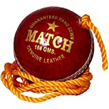 PSE Priya Sports PSEREDPRACTICE1 Leather Cricket Ball (Red)