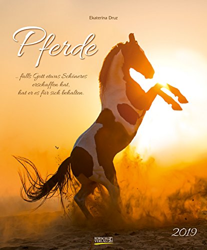 Pferde 2019: Großer Wandkalender. Foto-Kunstkalender - Pferdekalender mit literarischen Zitaten. 55 x 45,5 cm