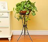NAUY Fioriera Tavolo pieghevole europeo in stile europeo telo da salotto balcone Mensola di fiori a pavimento scaffale vegetale (Colore : NERO)