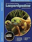 Leopardgeckos (Eublepharis Macularius): Basis-Ratgeber für Einsteiger