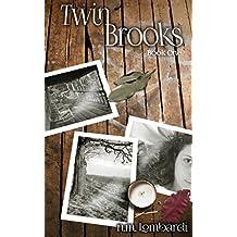 Twin Brooks (English Edition)