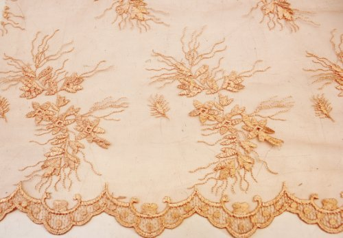 bric Embroidery on Polyester Mesh with Flower Design 54 Inches Wide by Fancy Fabrics ()