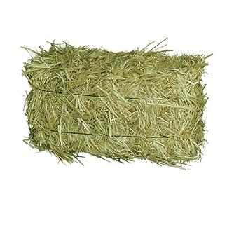Elmato 12046Hay Bales in a Meadow Hay, Hay, Hay Harvest 2017 Elmato 12046Hay Bales in a Meadow Hay, Hay, Hay Harvest 2017 51aPVL5FARL