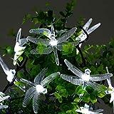 EONHUAYU Luci di Goccia Solari, Stringa di Goccia Solare 20FT/6M 30 LED Libellula Luci Esterne Impermeabili per Matrimoni di Alberi da Giardino (Cold White)