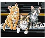 HNZZLC Leinen Leinwand Ölgemälde DIY Anzahl Hohe Qualität Kinder Über 6 Jahre Alt Erwachsene Dekoration Gut Erzogene Kätzchen Auf Klaviertasten 40X50 cm