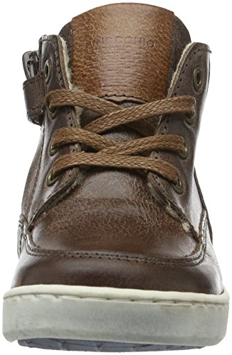 Pinocchio Jungen P2201 Low-Top Rot (53CO/Ac)