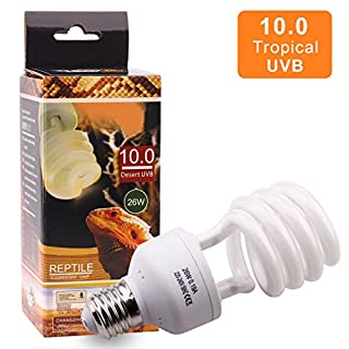 AIICIOO Reptile UVB Bulb 10.0 26W High UVB Output Desert Compact Fluorescent Bulb for Amphibian Tortoise Lizard Succulent Plants Improve D3 Synthesis Increase Calcium Absorption (26W)