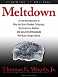 Meltdown: A Free-Market Look at Why the Stock Market Collapsed, the Economy Tanked, and Government Bailouts Will Make Things Wor