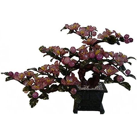 Giada Viola Peony fiori