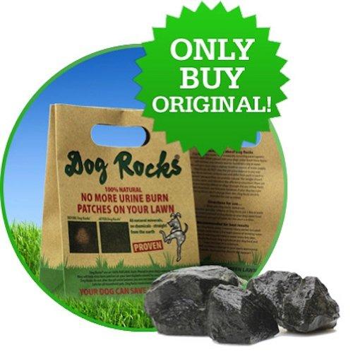 Dog Rocks Urinpflaster Preventer 200g Beutel