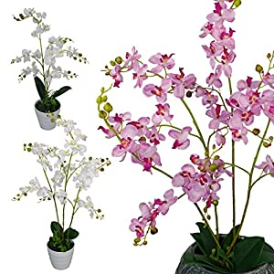 Leaf Luxury-Orquídeas Artificiales realistas (60 cm, tamaño Grande), Color Blanco, 65cm