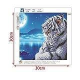 JAGENIE 5D DIY Tiger Animal Diamant Gemälde Stickerei Kreuz Crafts Stitch Home Decor 30x 30cm