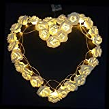 LUXJET LED cadena luces,Rosa Guirnalda De Luces,bateria cargada, Ideal para Navidad, Navidad, boda/fiesta de cumpleaños decoraciones (30LED,3M,blanco cálido)