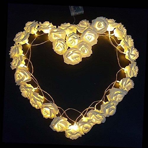 Girnalda de luces de leds con forma de rosas