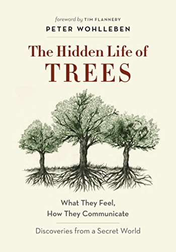 The Hidden Life of Trees: What They Feel, How They Communicate—Discoveries from A Secret World (English Edition)