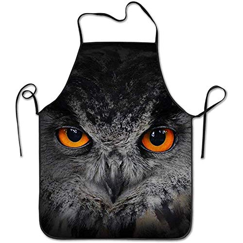 Kostüm Eagles Women's - Waitress Aprons The Evil Eyes Eagle Owl Bubo Bubo Funny Cooking Apron for Men Women - BBQ Grill Kitchen Chef Barbecue Gifts, One Size Fits Most