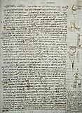 Leonardo da Vinci – Codex Leicester: River Theories Leonardo da Vinci (1452-1519/Italian) Drawing Armand Hammer Foundation Los Angeles California USA Poster Drucken (60,96 x 91,44 cm)
