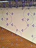 Astic Group - Foglio di cellophane trasparente con motivo a pois, 1 m x 80 cm, 2 m di nastro arricciabile e 2 m di nastro per regali, 5 x 3 cm, trasparente