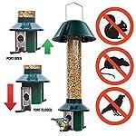 Squirrel Proof Wild Bird Feeder - Roamwild PestOff (Mixed Seed / Sunflower Heart Feeder) 9