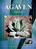 Agaven (NTV Garten)