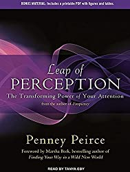 Leap of Perception: The Transforming Power of Your Attention by Penney Peirce (May 21,2013)