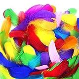 FASHION AMA Piuma D'Oca Piuma Fai da Te Leggera Piume di Colore Fatte A Mano Palla D'onda Decorativa Naturale Brillante Piuma