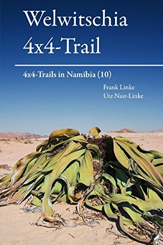 Welwitschia 4x4-Trail: 4x4-Trails in Namibia (10)