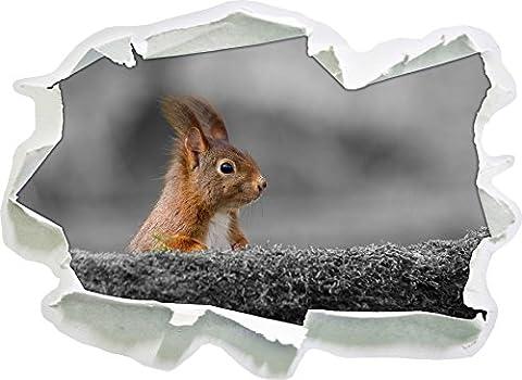 écureuils drôles derrière un tronc d'arbre noir / blanc, taille d'autocollant de mur 3D de papier: 92x67 cm décoration murale 3D Stickers muraux Stickers