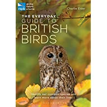 The Everyday Guide to British Birds: Identify our common species and learn more about their lives (rspb)