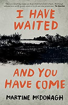 I Have Waited, and You Have Come by [McDonagh, Martine]