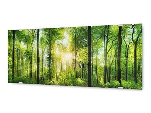 KD Dsign+ Glasbild Wandbild GLX12582972458 Wald Licht 125 x 50cm / inkl. neues Aufhängesystem -