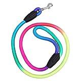 Prosperveil Colorful Weave Nylon Belt Pet Dog Traction Rope Round Training Leashes L