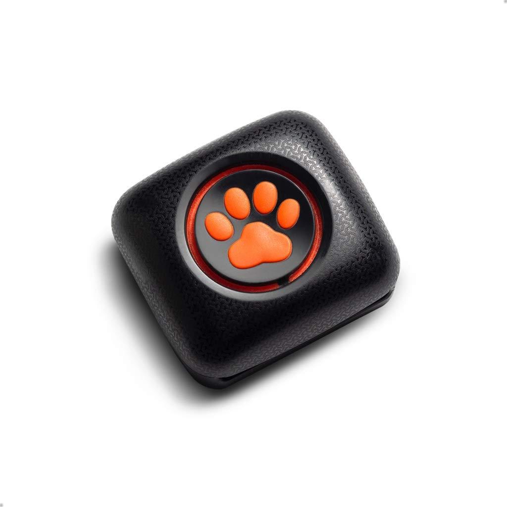 Pitpat 2 – Monitor de Actividad para Perros