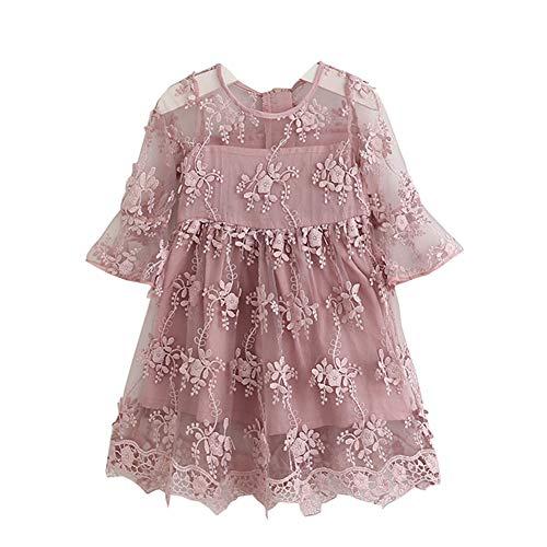 Fairy Baby Kleinkind Mädchen Spitze Prinzessin Kleid Stickerei knielangen Jacquard Size 7(2-3 Jahre) (Rosa) (Fairy Babys Für Kleider)