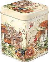 Boîte Hérisson dans la forêt champignon Boîte à thé thé