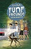 Fünf Freunde und das Burgverlies (Einzelbände, Band 18)