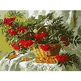 LRZZDP Kits Fruit Basket Bird DIY Peinture À l'huile sur Toile Numérique par Numéros À Colorier par Numéros Peinture Acrylique Moderne par Numéro