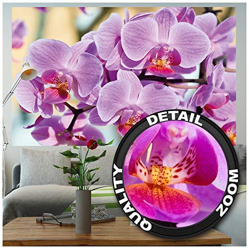 GREAT ART XXL Poster - Orchideen - Wandbild Dekoration Blumen Natur Phalaenopsis Blüten Pflanze Knabenkraut Floristik Frühling Relax Wellness Spa Wandposter Wanddeko Bild (140 x 100 cm) -