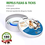 u-picks dog flea collar,6 months flea and tick control protection for dogs cats,adjustable size&waterproof,stop pest bites&itching(blue) U-picks Dog Flea Collar,6 Months Flea and Tick Control Protection for Dogs Cats,Adjustable Size&Waterproof,Stop Pest Bites&Itching(Blue) 51aTWADAZIL