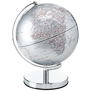 Gentlemen's Hardware Globe Light | Silver | 10 Inch