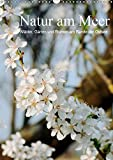 Natur am Meer - Wälder, Gärten und Blumen am Rande der Ostsee (Wandkalender 2019 DIN A3 hoch): Die Mecklenburger Ostseeküste und ihr Umland werden ... (Monatskalender, 14 Seiten ) (CALVENDO Natur)