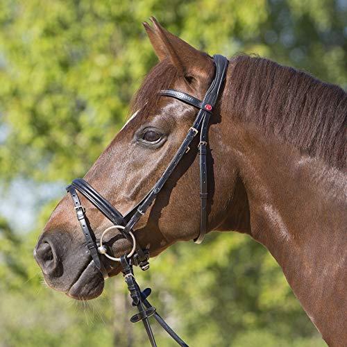 Kieffer Trensenzaum Serenity, schwarz englisch kombiniertes Reithalfter, geschwungenes Stirnband mit silberfarbener Kette und mit perforiertem Leder überzogen, schwarz, Größe Pferd:Warmblut