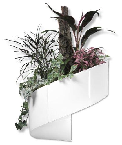 Para PC ' verde - A de pared-montaje en maceta para interiores/exteriores - blanco