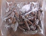Mushroom Box(TM) - Spinette in legno per crescere funghi shiitake su tronchi d'albero