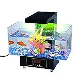 Deluxe Desktop Aquarium (komplett Geschenkset für Büro oder zu Hause) von Global Care Market