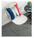 DYGCHA Silla Silla de Alambre Hueco Silla de Comedor cómoda Silla de Fiesta Simple Cambio de Banco de Zapatos (Color : Oro)