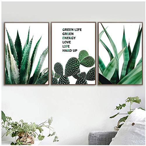 Aloe Sansevieria Cactus Arte pared Pintura lona Plantas