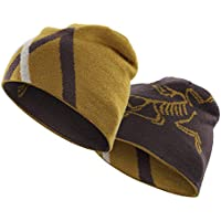 Arcteryx Arc Mountain Toque Adult's Knit Hat