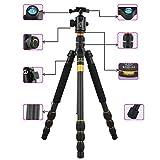 Best Carbon Fiber Monopods - Flexzion Camera Complete Tripod Stand Monopod Ball Head Review
